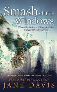 rsz_smash_all_the_windows_final_final_ebook_cover 325 x 521 for website copy